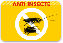 anti insecte alimentaire
