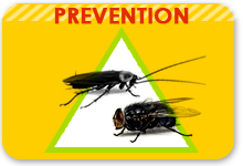 prevention anti insecte